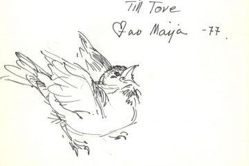 """Kuva linnusta ja teksti """"Till Tove av Maija -77""""."""