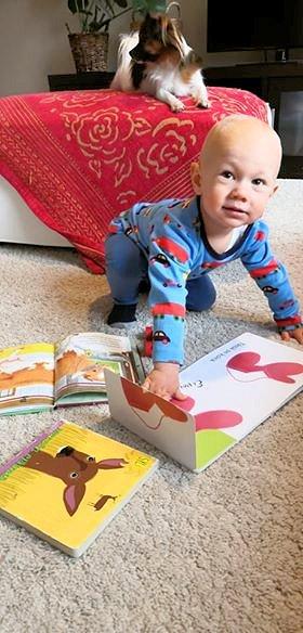 Pieni lapsi on lattialla ja tutkii kirjoja.
