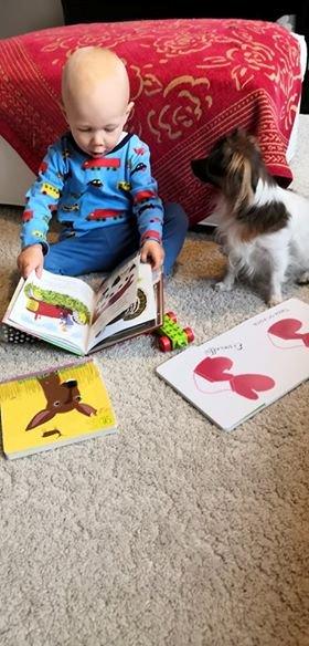 Lapsi istuu selaamassa kirjaa. Vieressä istuva koira katsoo lasta.