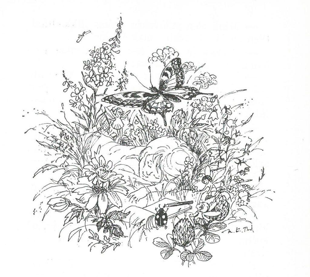 Kuvituskuva satukirjaan Naperon napakymppi